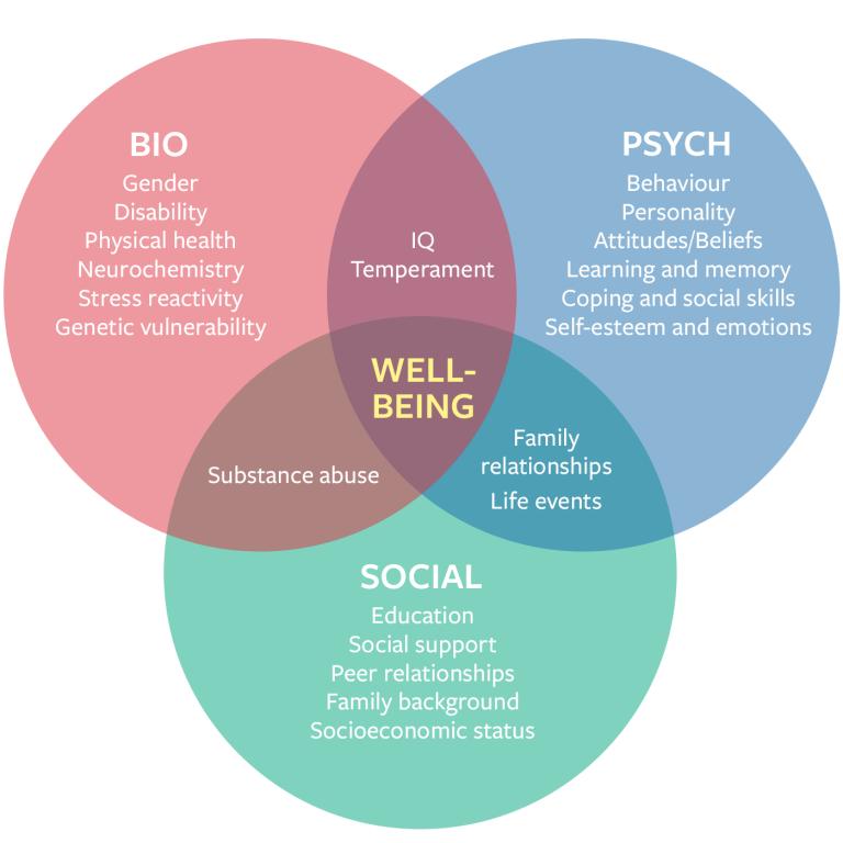 bio-psych-social-diagram