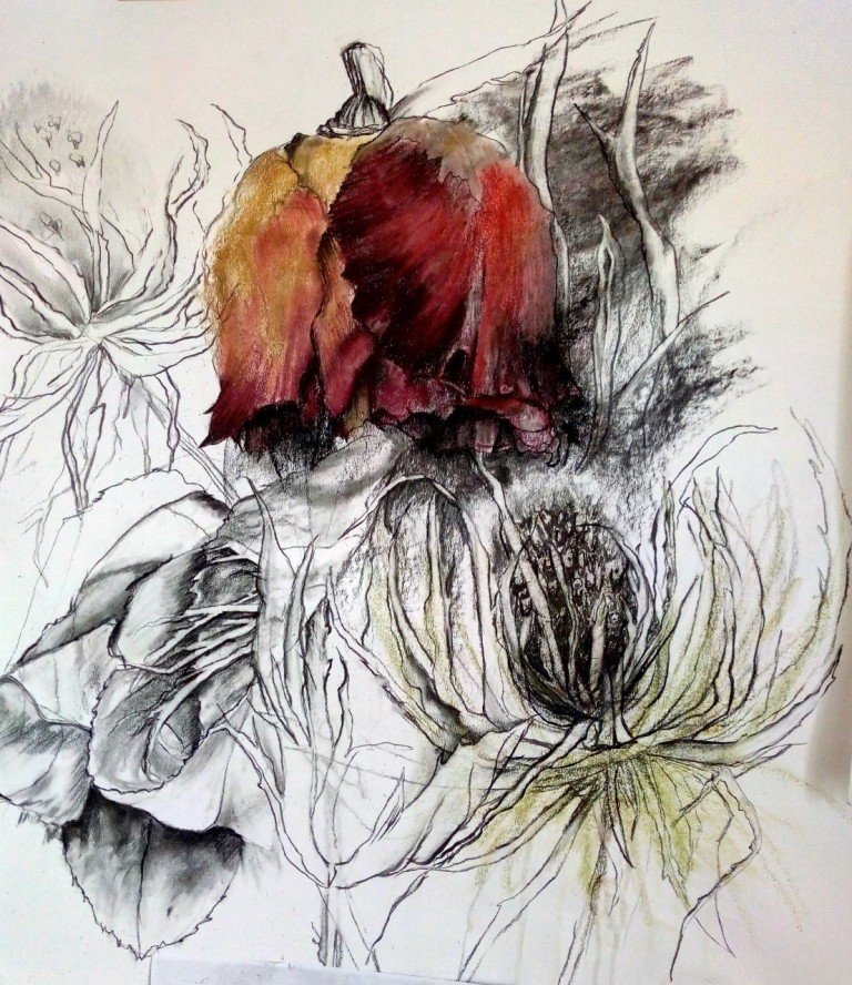 thumbnail_rose and thistle