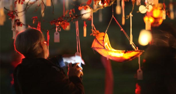 all-souls-lanterns-on-tree